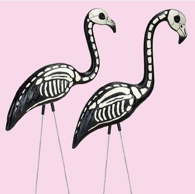 Pink flamingo 5260aa62e40e5dd62871a51327330c8ceee0b1f4d4c3883ee694d0809eb9fd49